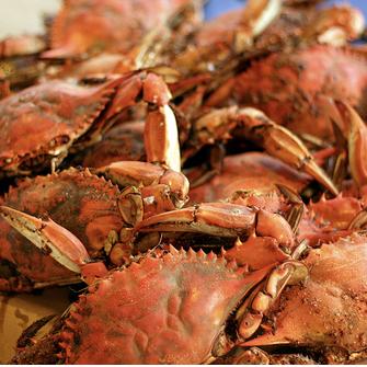 Foto diambil di S & J Crab Ranch oleh James K. pada 10/25/2012