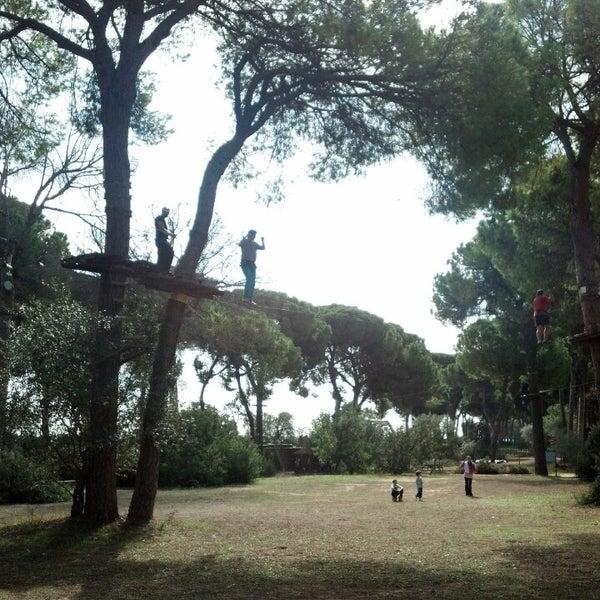 Photos At Bosque Suspendido Parque De Aventura En Los Arboles Www Bosquesuspendido Com 3 Tips