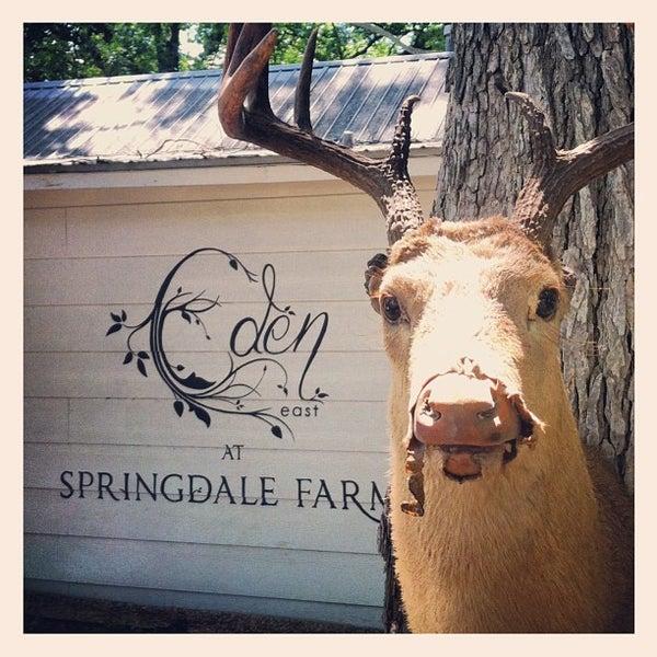 Foto tirada no(a) Eden East at Springdale Farm por Ben T. em 6/8/2013
