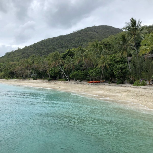 Fitzroy Island: 7 Tips From 351 Visitors