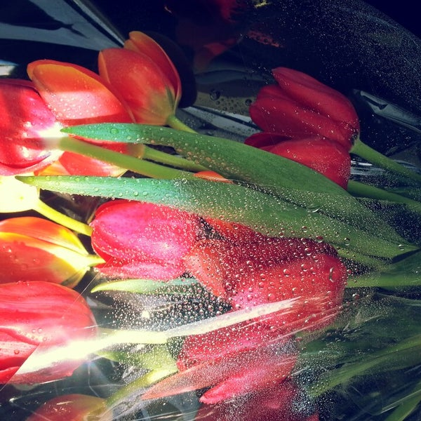 Photo taken at Modesto Exotic Flowers by Pablo C. on 11/2/2013