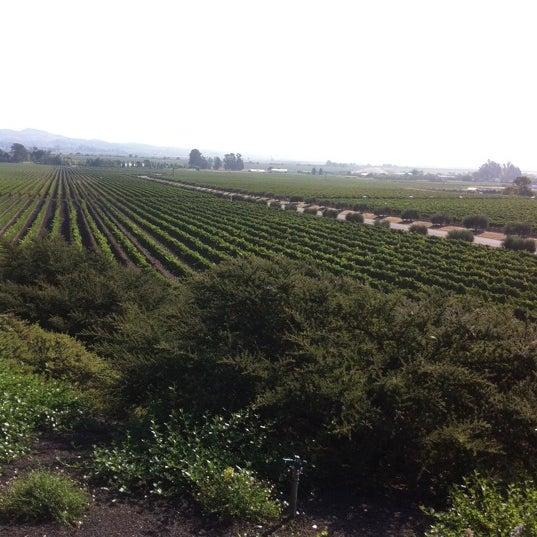 Das Foto wurde bei Gloria Ferrer Caves & Vineyards von Jgbooty am 9/9/2011 aufgenommen