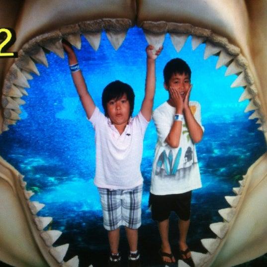 6/25/2012에 Vivian M.님이 SEA LIFE Minnesota Aquarium에서 찍은 사진