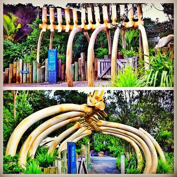 8/8/2012 tarihinde Evgeny P.ziyaretçi tarafından Auckland Zoo'de çekilen fotoğraf