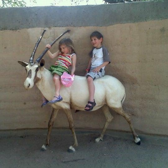 Снимок сделан в Phoenix Zoo пользователем Frank M. 4/5/2012