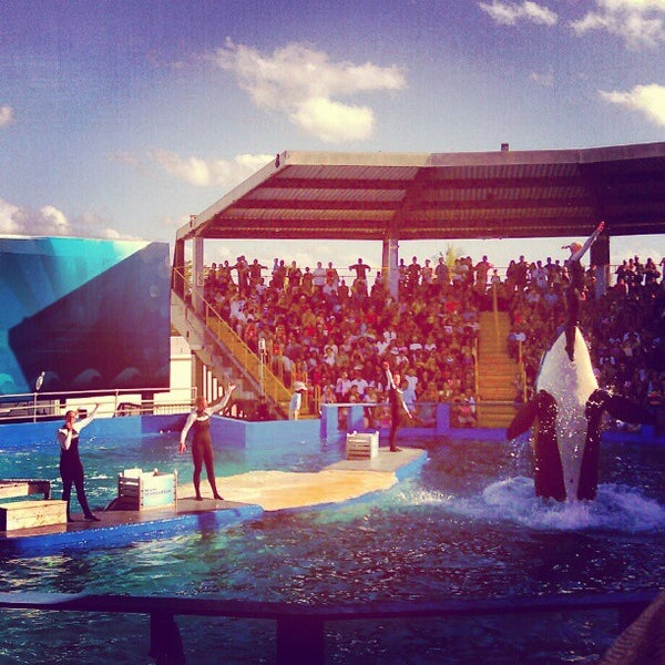 Photo prise au Miami Seaquarium par Monica Lynne H. le4/8/2012