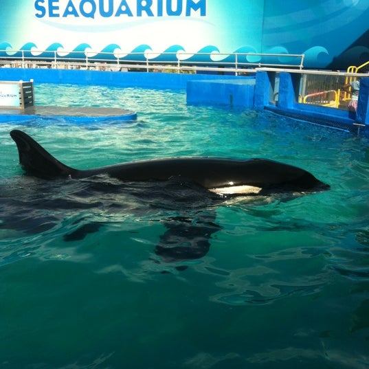 Foto scattata a Miami Seaquarium da Tania S. il 7/23/2012