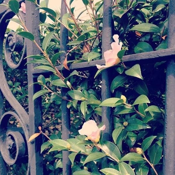Foto diambil di Wentworth Mansion oleh Charming Inns of Charleston pada 11/12/2012