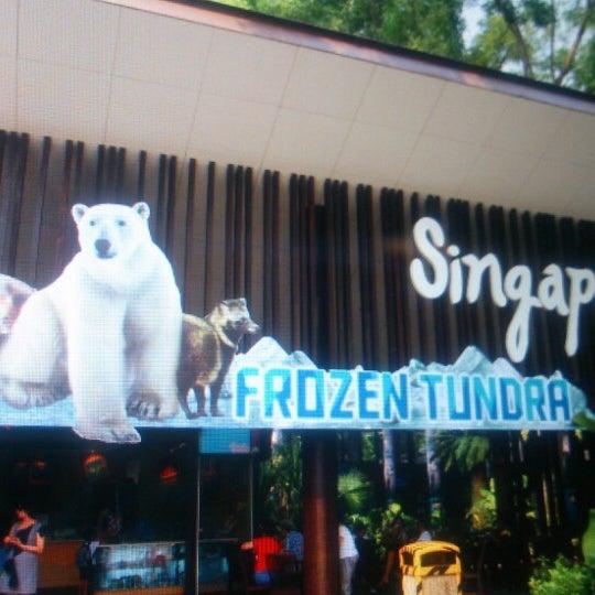 Foto tirada no(a) Singapore Zoo por ya k. em 6/19/2013