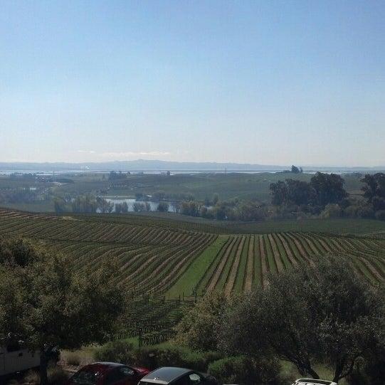 Das Foto wurde bei Artesa Vineyards & Winery von David R. am 3/21/2013 aufgenommen