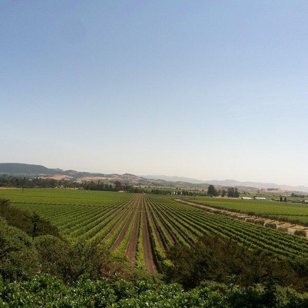 Das Foto wurde bei Gloria Ferrer Caves & Vineyards von Satoru am 5/25/2013 aufgenommen