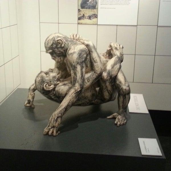 3/3/2013에 Linda B.님이 Museum of Sex에서 찍은 사진