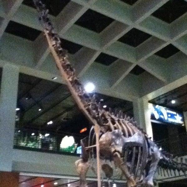 Foto scattata a Houston Museum of Natural Science da Giselle il 4/6/2013