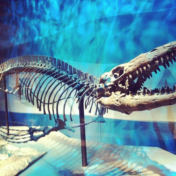 Foto tirada no(a) Perot Museum of Nature and Science por Keny D. em 1/28/2013