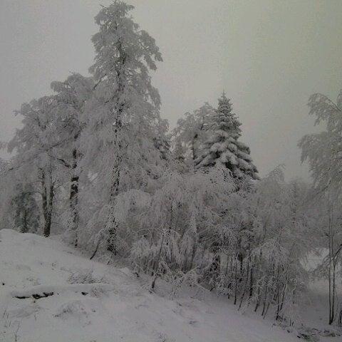 รูปภาพถ่ายที่ The Green Park Kartepe Resort & Spa โดย Cagla C. เมื่อ 2/17/2013
