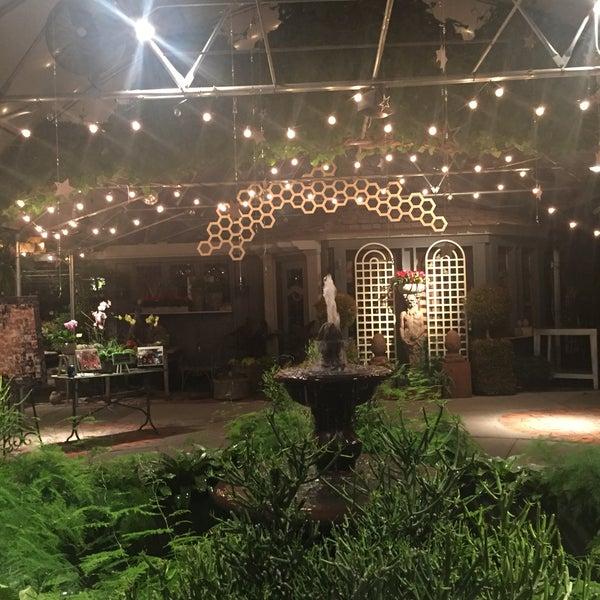 Sugar House Salt Lake City: Cactus And Tropicals