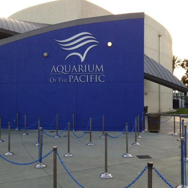 2/7/2013에 Joyce님이 Aquarium of the Pacific에서 찍은 사진