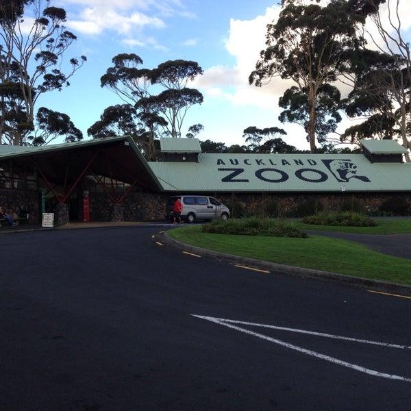 5/24/2013 tarihinde Chorisiaziyaretçi tarafından Auckland Zoo'de çekilen fotoğraf