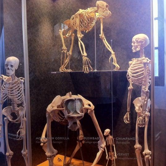 Photo prise au San Diego Museum of Man par Hayley le12/30/2012