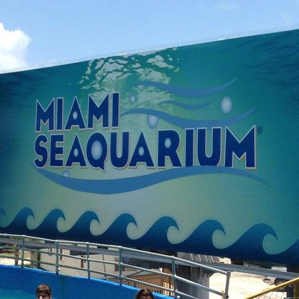 Foto scattata a Miami Seaquarium da Jossie il 7/6/2013