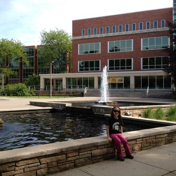 Msu Main Library Michigan State University 38 Tips