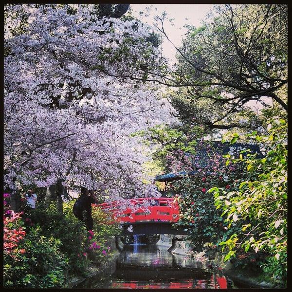 3/25/2013 tarihinde Arzu Y.ziyaretçi tarafından Descanso Gardens'de çekilen fotoğraf