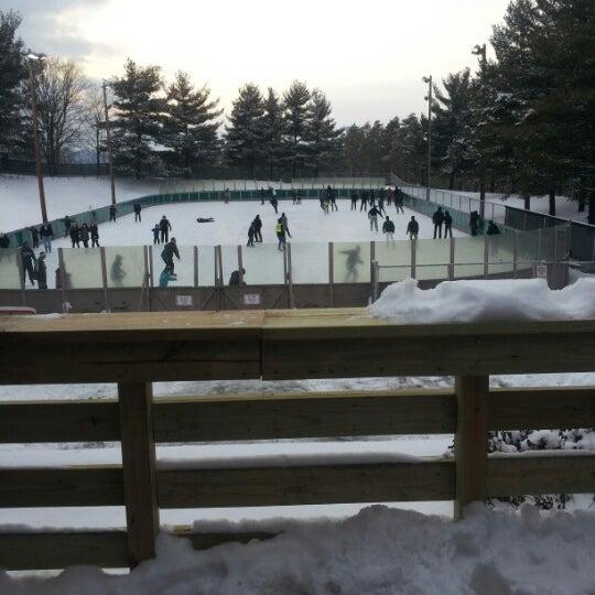 schenley ice skating rink - 540×540