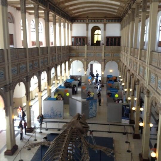 11/15/2012にJosé Ignacio S.がMuseo Nacional de Historia Naturalで撮った写真