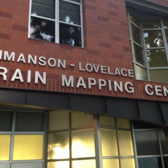 Ucla Brain Research Institute