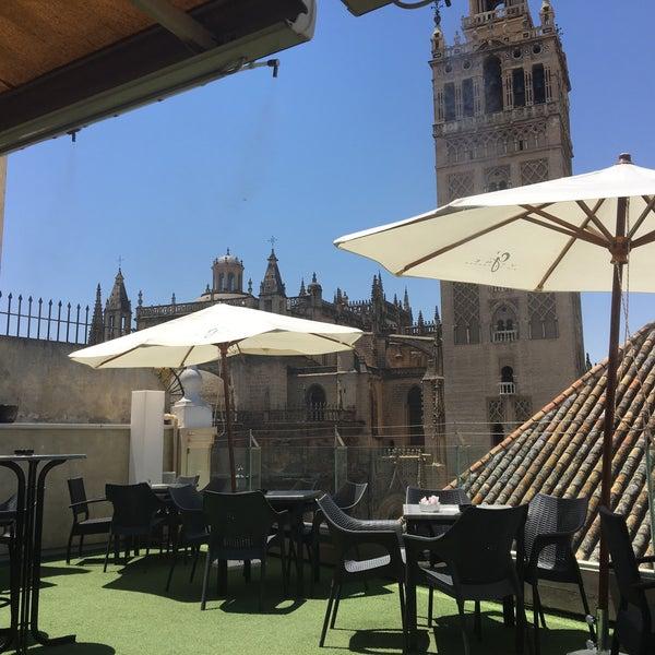 Fotos En Terraza Bar Hotel Doña María Santa Cruz 4 Tips