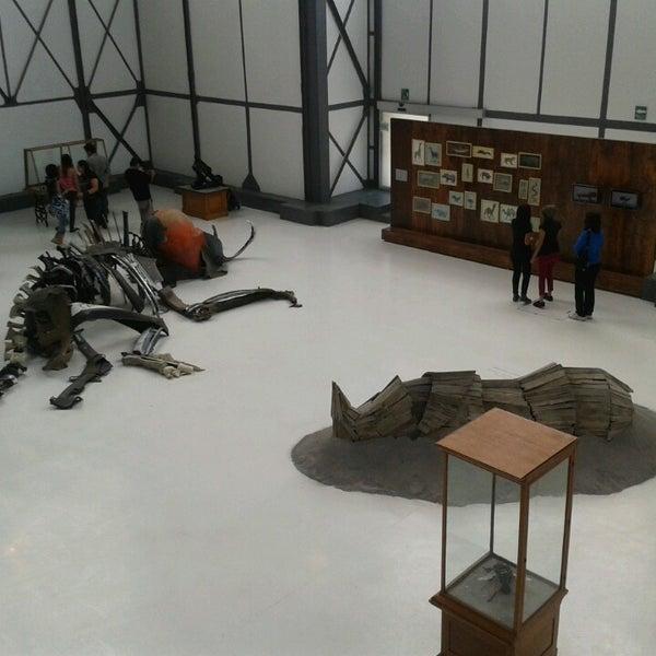 Photo prise au Museo Universitario del Chopo par Clos G. le3/31/2013