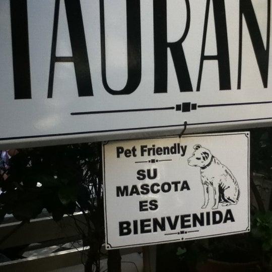 Traiga a su mascota, Pet Friendly.