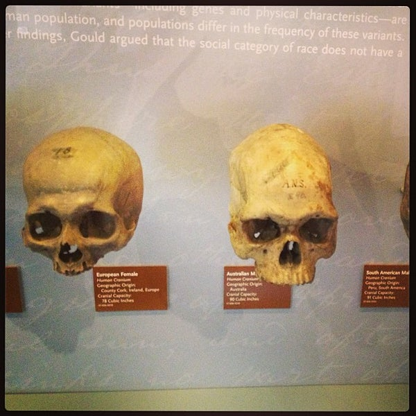 Das Foto wurde bei University of Pennsylvania Museum of Archaeology and Anthropology von Chris M. am 6/16/2013 aufgenommen