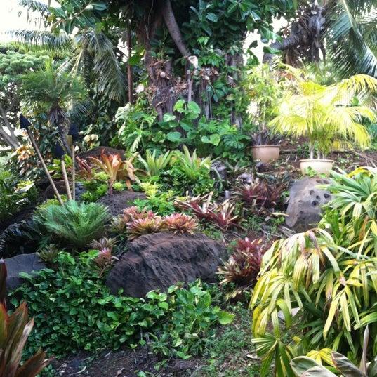 11/11/2012에 Allyson P.님이 Duke's Kauai에서 찍은 사진