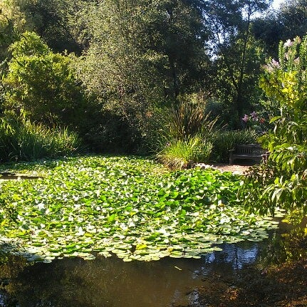 9/14/2012 tarihinde Joanna T.ziyaretçi tarafından Descanso Gardens'de çekilen fotoğraf