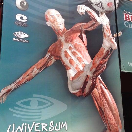 3/21/2013에 Rafael R.님이 Universum, Museo de las Ciencias에서 찍은 사진