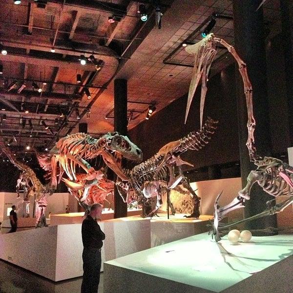 Foto scattata a Houston Museum of Natural Science da Simon Taylor A. il 12/2/2012