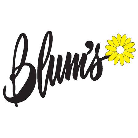 0479ae1c0a8 Blum s Swimwear   Intimate Apparel - Lingerie Store