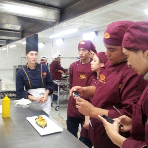 Fotos en escuela de cocina cocinarte torreon coahuila de zaragoza - Escuela de cocina zaragoza ...