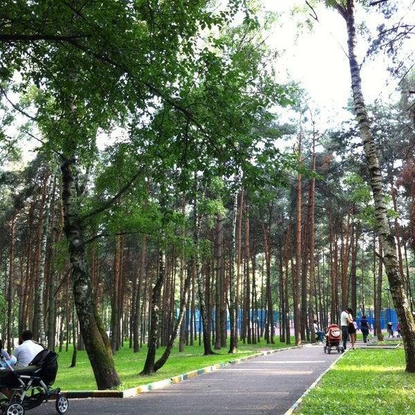 международный день москва парк сосенки фото актуален данные вопрос