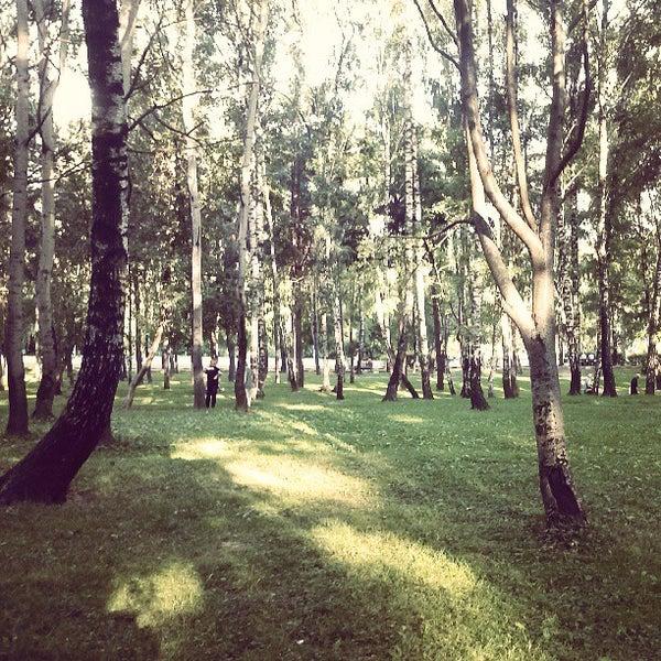 москва парк сосенки фото привлекал меня ещё