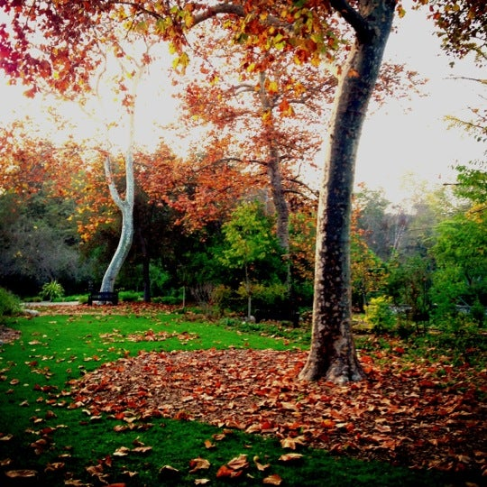 12/10/2012 tarihinde Geoff Y.ziyaretçi tarafından Descanso Gardens'de çekilen fotoğraf