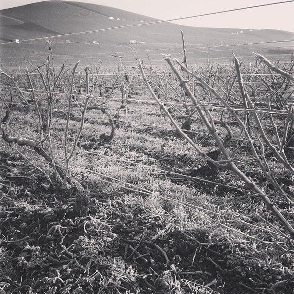 Das Foto wurde bei Champagne BRIMONCOURT von Monsieur D. am 12/11/2013 aufgenommen