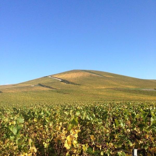 Das Foto wurde bei Champagne BRIMONCOURT von Monsieur D. am 10/30/2013 aufgenommen