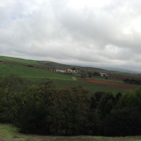 Das Foto wurde bei Artesa Vineyards & Winery von En S. am 12/6/2012 aufgenommen