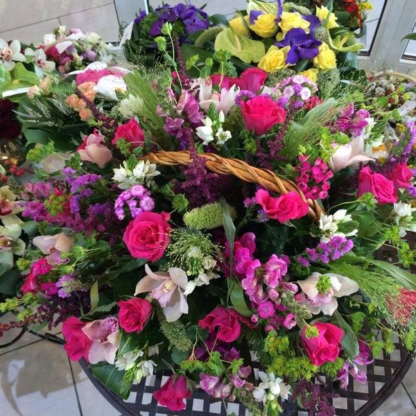 Доритис цветы подарки