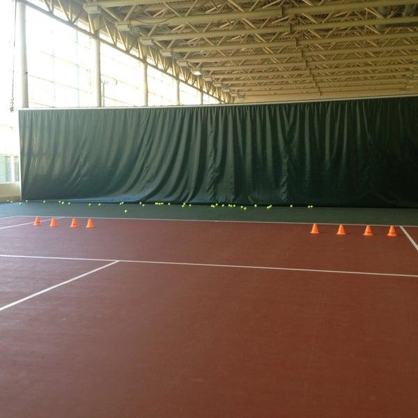 теннисные корты в крокус сити фото один