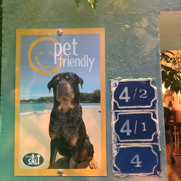The best place in bodrum to eat and drink and also watch the world cup game. The food is amazing and they are pet friendly!