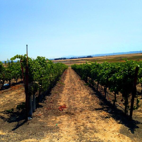 รูปภาพถ่ายที่ Ram's Gate Winery โดย Ram's Gate Winery เมื่อ 9/11/2013