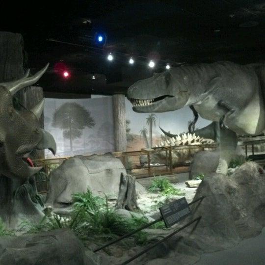 Foto tirada no(a) Las Vegas Natural History Museum por Tori S. em 1/10/2013
